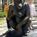 Kako planirati posetu zoo-vrtu
